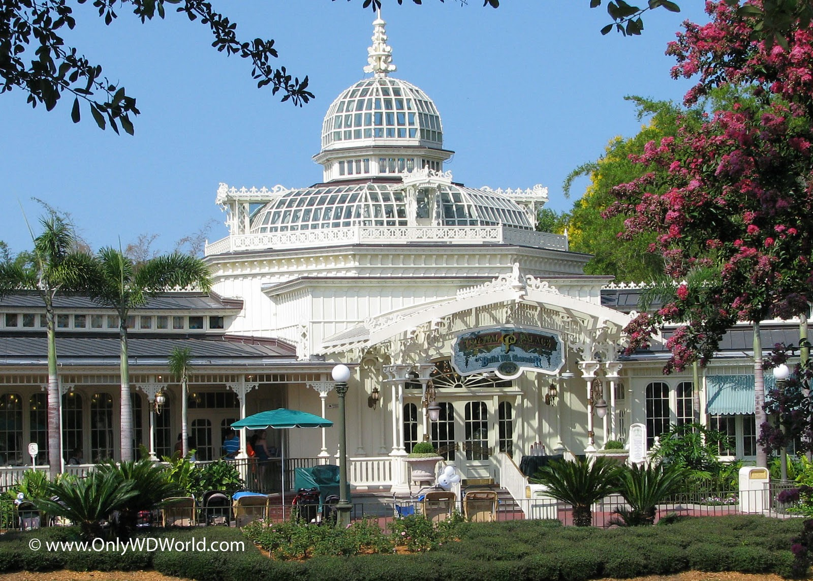 Disney World Crystal Palace101